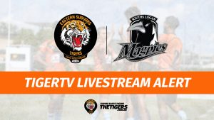 TigerTV Livestream Alert Souths Logan Magpies Easts Tigers Trials Week 2